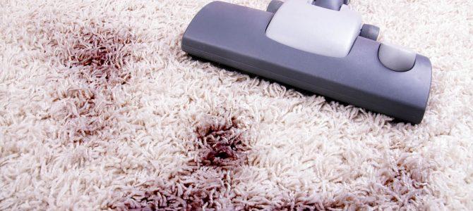 Dúvidas sobre como limpar tapete felpudo? Veja 5 dicas! – WhatsApp 96288-0872